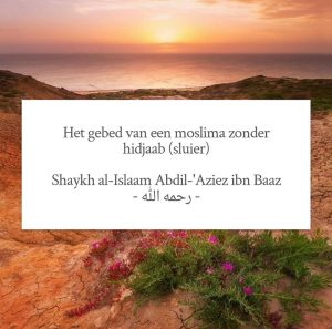 sluier moslima