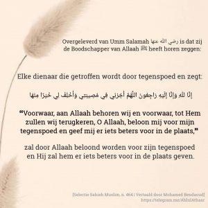 dienaar van Allah